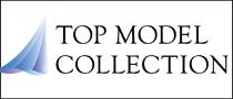 TopModelCollectionバナー